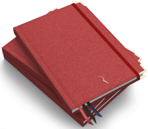 Dziennik Kobiety Niezależnej edycja 2020